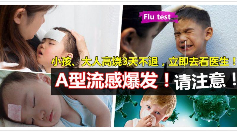 A型流感 Influenza A